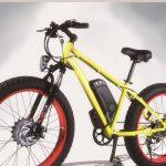 Bicycle electrique a vendre