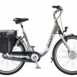 Velo giant electrique occasion