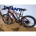 Velo electrique giant occasion