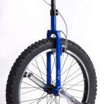 Roue monocycle