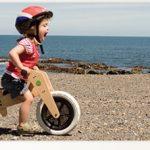 Tricycle evolutif draisienne